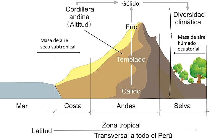 Clima del per wikipedia la enciclopedia libre - El tiempo en macanet de la selva ...