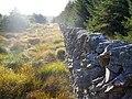 Drystone Dyke at Mullknock - geograph.org.uk - 566381.jpg