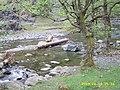 Duboštica, ušće u Krivaju - panoramio.jpg
