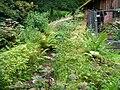 Dumfries House sawmill leat.JPG