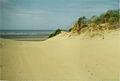 Dunes (6841812896).jpg