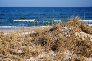 Carolina Beach, North Carolina - Waves rolling in on the beach and dunes of Carolina Beach
