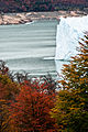 EL Perito Moreno - Calafate.jpg