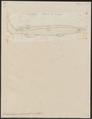Echinorhinus spinosus - 1700-1880 - Print - Iconographia Zoologica - Special Collections University of Amsterdam - UBA01 IZ14100185.tif