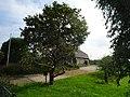 Echteld woonhuis met agrarisch bedrijfsgedeelte Stationsweg 2 2.jpg