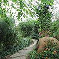 Edvard Andersons växthus-IMG 1618.jpg