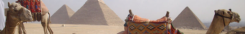 Egypt banner Camels and pyramids.jpg