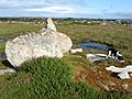 Erratic boulder - geograph.org.uk - 1428678.jpg