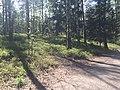 Espoo, Finland - panoramio (39).jpg