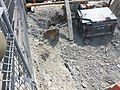 Excavation of the new Globe and Mail building, looking west, 2014 05 12 (8).JPG - panoramio.jpg
