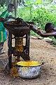 Extraction de l'huile de palme dans le village de Tayap.jpg