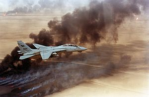 F-14A VF-114 over burning Kuwaiti oil wells 1991.JPEG