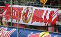 FC Red Bull Salzburg gegen Admira Wacker Mödling (Mai 2015) 23.JPG