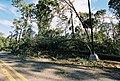 FEMA - 5118 - Photograph by Jocelyn Augustino taken on 09-25-2001 in Maryland.jpg