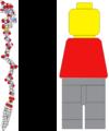 FSL Lego minifigure analogy.png