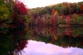 Fall-wine-cellar-lake-trees - West Virginia - ForestWander.png