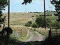 Farm track at Whittington Common - geograph.org.uk - 892022.jpg
