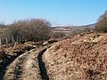 Farm track near Ystumcegid farmhouse - geograph.org.uk - 1763232.jpg