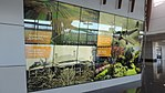 Feature wall showcasing aspects of the local area, passenger terminal, Brisbane West Wellcamp Airport, 2016.jpg