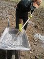 Fertilisation par des fèces déshydratées à Dayet Ifrah (fertilisation with dried faeces) (12812088214).jpg