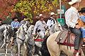 Fiestas Patrias Parade, South Park, Seattle, 2015 - 287 - the horses (20971848154).jpg