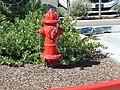 Fire hydrant, American Fork, Utah, Aug 16.jpg
