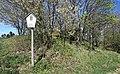 Flächennaturdenkmal bei Zwönitz 2H1A2479WI.jpg