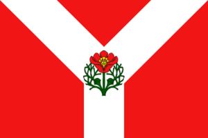 Rudnya, Volgograd Oblast - Image: Flag of Rudnya (Volgograd oblast)