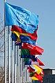 Flags at ESO Headquarters (24254043614).jpg