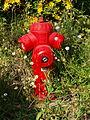Fleury-en-Bière-FR-77-bouche d'incendie-04.jpg