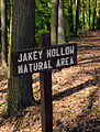 Flickr - Nicholas T - Jakey Hollow Natural Area (1).jpg