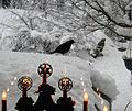 Flickr - Per Ola Wiberg ~ mostly away - Blackbird in snow.jpg