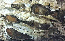 Flint-Concretions--section2.jpg