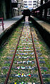 Flower train.jpg