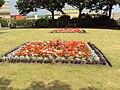 Flowerbeds, Dolphin Gardens, Cleethorpes - DSC07327.JPG