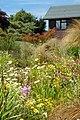 Flowers - panoramio (39).jpg