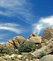 Fly-Over, Joshua Tree National Park 4-13 (24962093195).jpg