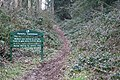Forestry Commission Path in Frith Wood - geograph.org.uk - 396518.jpg