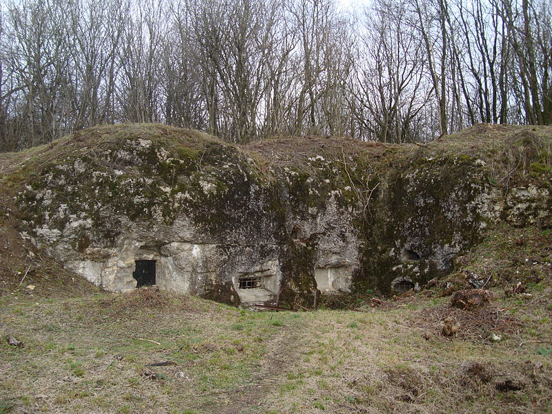 File:Fort Douaumont defenses perimeter.JPG