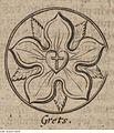 Fotothek df tg 0004102 Wappen ^ Siegel ^ Lutherwappen ^ Lutherrose ^ Reformation.jpg
