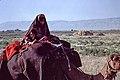 Françoise Foliot - Afghanistan 140.jpg