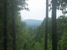 From the peak of Driskill Mountain.jpg