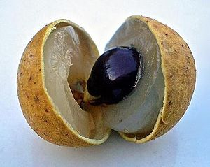Longan - Longan fruit with flesh, seed, and peel visible.