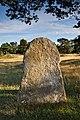 Gålrums gravfält bildsten Alskog 9 Gotland 2015.jpg