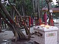 Gadhimai Temple decorated for Tihar 02.jpg