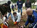 Gardening at Yemin Orde (6797713677).jpg