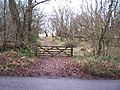 Gate and track - geograph.org.uk - 107054.jpg