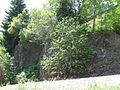 Gebirgsstein Oberbach 2010 Juli 02.jpg