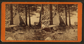 Gems of Lake Superior scenery (graphic) - photographed by B.F. Childs, by Childs, B. F..png