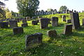 Georgensgmünd Jüdischer Friedhof 50427.JPG
